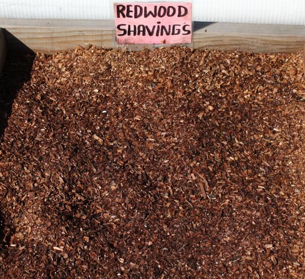 Redwood-shavngs-