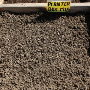 planter-box-mix