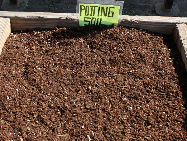 Premium 100 organic potting soil for all potted plants for Everything about soil