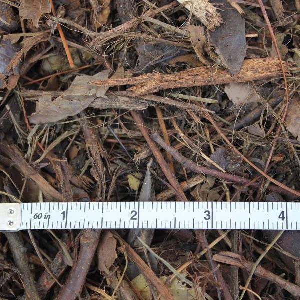 three-inch-cover-mulch-close-up