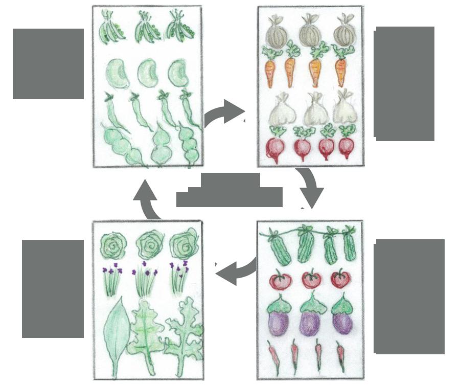 crop-rotation-wf