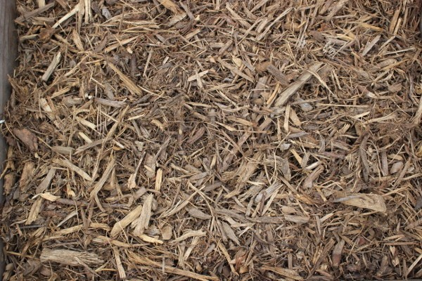 cover-mulch