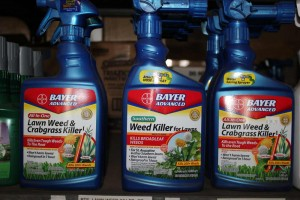 4423-bayer-advanced-weed-killer