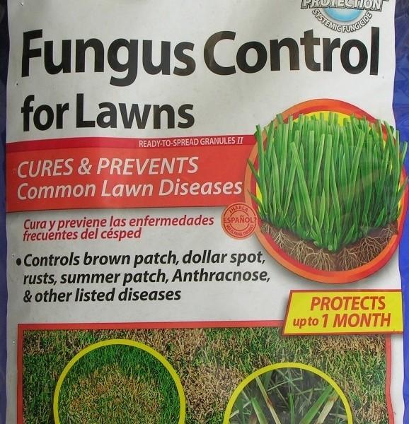 bayer-advanced-fungus-control-2