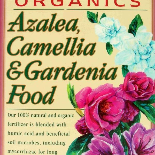ebstone-azalea-camellia-gardenia-food-4lbs-box-FRONT