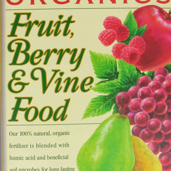 ebstone-fruit-berry-vine-food-FRONT