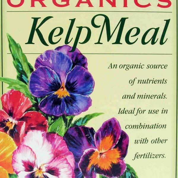 ebstone-kelp-meal-3.5lbs-box-FRONT