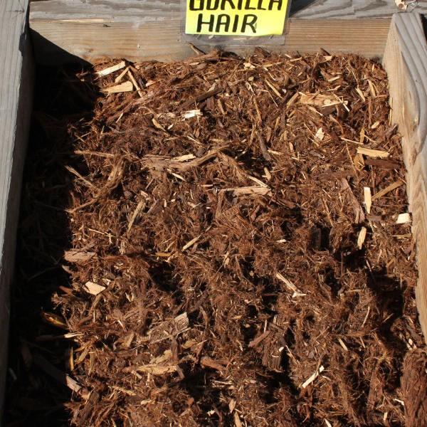gorilla-hair