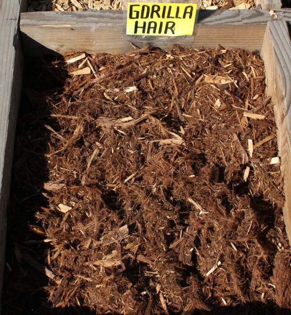 Redwood bark ground cover zef jam