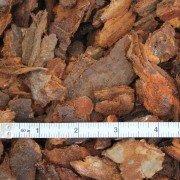 medium decorative bark close up