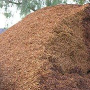 shredded walk on bark bulk mound