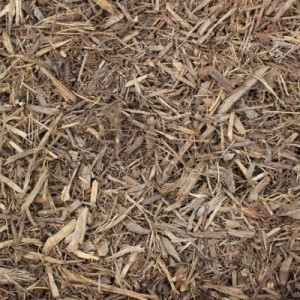 cover mulch