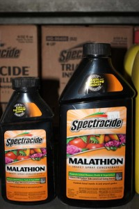 4419-spectracide-malathion