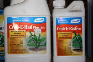 4425-crab-e-rad-plus