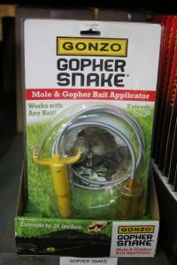 gopher-snake-resized